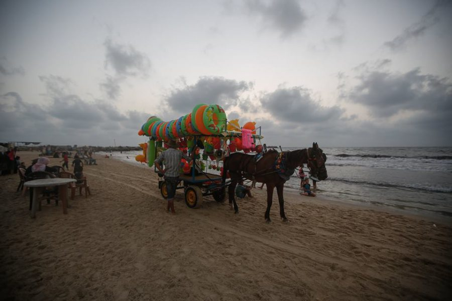 Gaza beach with horse cart